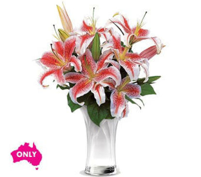 Picture of Celebrate Lilies