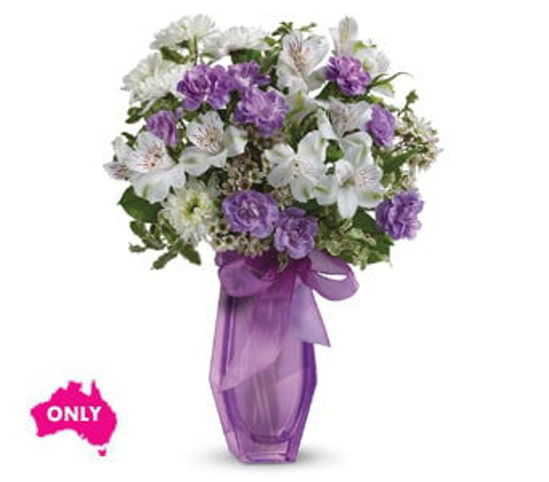 Picture of Lilac Beauty